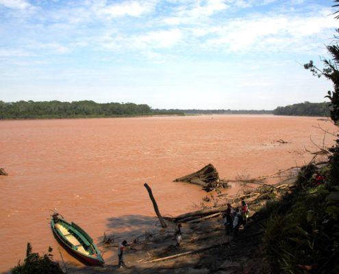Blick über schlammfarbigen Fluss mit tropischer Vegetation am Ufer