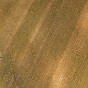 Flugaufnahme von einem großen Feld, ganz klein sind Menschen sichtbar