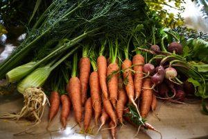 Karotten, Radieschen, Fenchel in großen Mengen liegen auf Tisch
