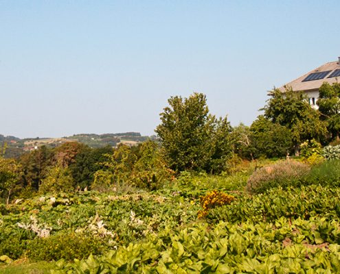 Blick über eine hügelige Landwirtschaft