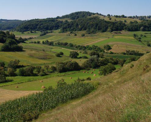Blick über eine Agrarlandschaft