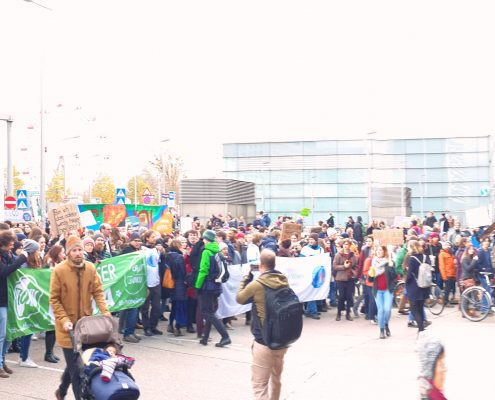 Blick über große Menschenmenge, die demonstriert